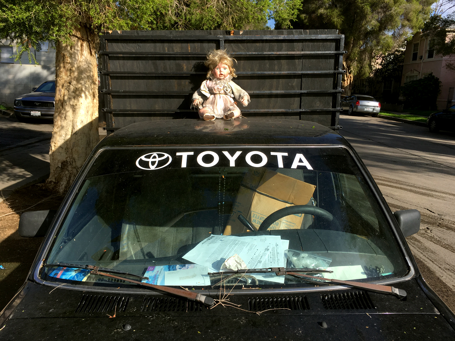 Doll on Toyota